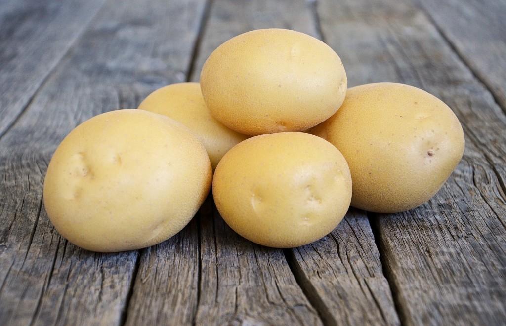 картофель сорта агата